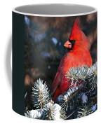 Cardinal And Evergreen Coffee Mug