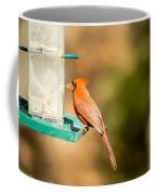 Cardinal Bird At Bird-feeder Coffee Mug