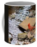 Cardinal By The Creek Coffee Mug