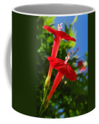 Cardinal Climber Flowers Coffee Mug