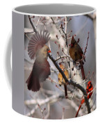 Cardinal Colony Coffee Mug