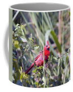 Cardinal In Bush Iv Coffee Mug