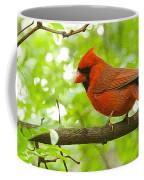 Cardinal In Red Coffee Mug
