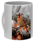 Cardinal In The Rain Coffee Mug
