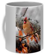 Cardinal In The Rain Coffee Mug