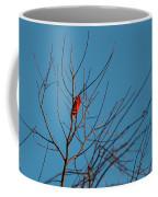 Cardinal Morning Coffee Mug