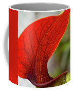 Carnivorous Plants 2 Coffee Mug