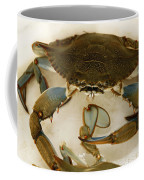 Carolina Blue Crab Coffee Mug