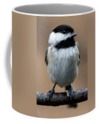 Carolina Chickadee Coffee Mug