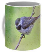 Carolina Chickadee On Angled Perch Coffee Mug