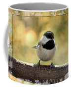 Carolina Chickadee With Decorative Frame IIi Coffee Mug