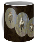 Carolina Wren - Thryothorus Ludovicianus Coffee Mug