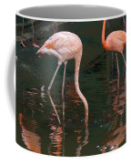 Cartoon - A Flamingo With Its Head Under Water In The Jurong Bird Park Coffee Mug