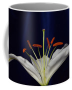 Casablanca White 9966 Coffee Mug