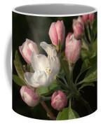 Cascade Of Apple Blossoms Coffee Mug