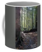 Cascades Forest Path Coffee Mug