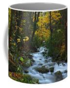 Cascades On The Motor Nature Trail Coffee Mug