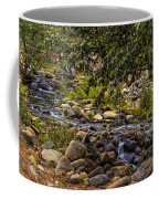 Cascading Creek Coffee Mug