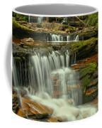 Cascading Everywhere At Ricketts Glen Coffee Mug