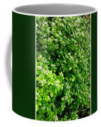 Cascading Fleabane Coffee Mug
