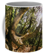 Castle Rock State Park Branch To The Sun Coffee Mug