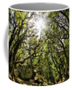 Castle Rock State Park Sun Rise Coffee Mug