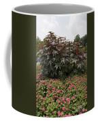 Castor Oil Plant Ricinus Communis Coffee Mug