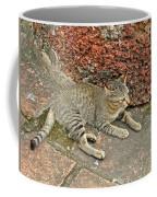 Cat At Wat Mahathat In 13th Century Sukhothai Historical Park-th Coffee Mug