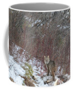 Cat Beauty Coffee Mug