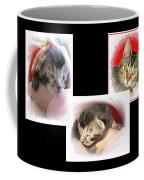 Cat Family Coffee Mug