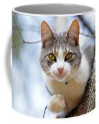 Cat In A Tree Coffee Mug