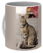 Cat In Aegina Island Coffee Mug