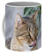 Cat In Athens Coffee Mug