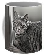 Cat In Window Coffee Mug