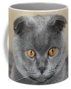 Cat Martin Coffee Mug