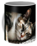 Cat Napping In The Sun By David Perry Coffee Mug