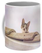 Cat On The Hot Tin Roof Coffee Mug