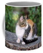 Cat On Tree Trunk Coffee Mug