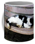 Cat Sleeping On Bench Coffee Mug