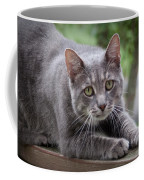 Cat Stretch Coffee Mug