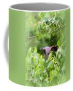 Catbird Coffee Mug
