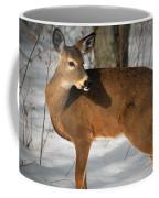 Catching Some Rays Coffee Mug