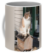 Catfeeder Coffee Mug