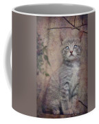 Cat's Eyes #02 Coffee Mug