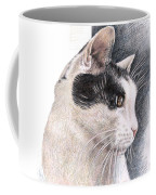 Cats View Coffee Mug