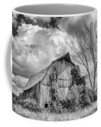 Cattaraugus County Barn 6160b Coffee Mug