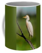 Cattle Egret On Stick Coffee Mug