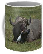 Cattle Egret With Cape Buffalo Coffee Mug