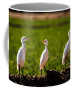 Cattle Egrets Coffee Mug