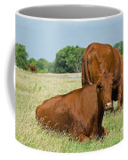 Cattle Grazing In Field Coffee Mug